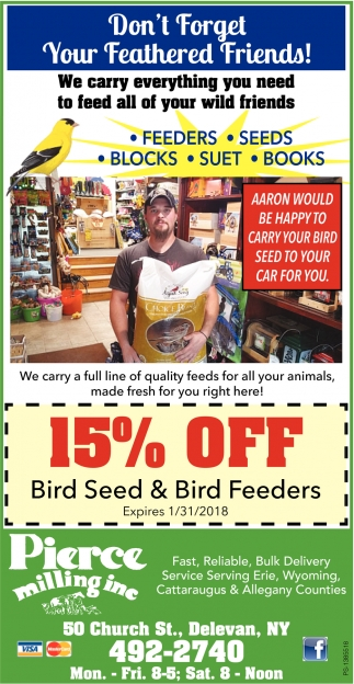 Don't Forget Your Feathered Friends!