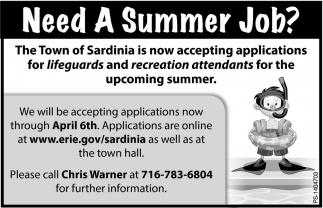need a summer job town of sardinia sardinia ny