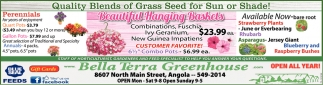 Quality Blends Of Grass Seed For Sun Or Shade!