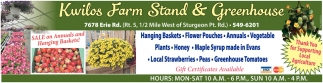 Sale On Annuals And Hanging Baskets