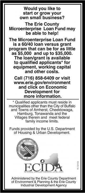 The Microenterprise Loan Fund