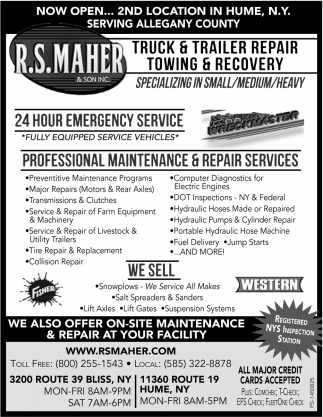 Professional Maintenance & Repair Services