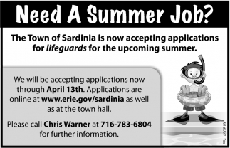 Need A Summer Job?