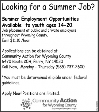 Looking For A Summer Job?