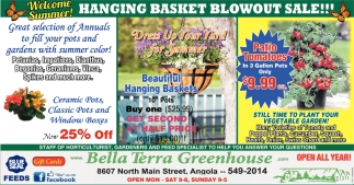 Hanging Baskets Blowout Sale!