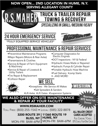 Professional Maintenance & Repair