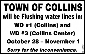 Will Be Flushing Water Lines