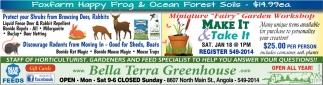 Foxfarl Happy Frog & Ocean Forest